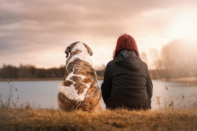 Perdere un cane può essere peggio di perdere un amico o un parente