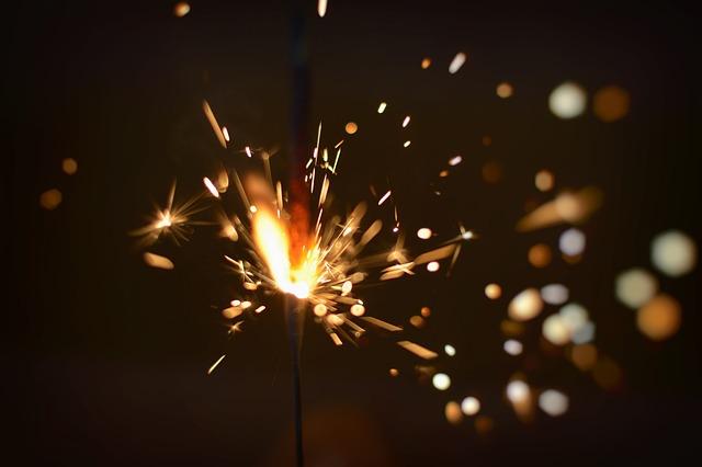 I fuochi d'artificio spaventano i nostri animali, ecco come comportarvi